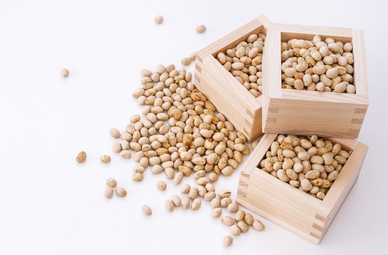 大豆 輸入
